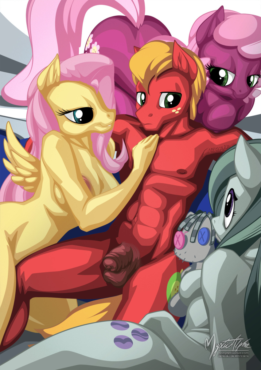 mlp fluttershy and big mac Dark souls 2 how to get to ruin sentinels